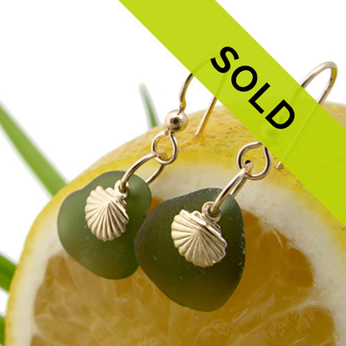 Jungle Green Sea Glass Earrings With 14K G/F Shells Sorry this pair has sold!