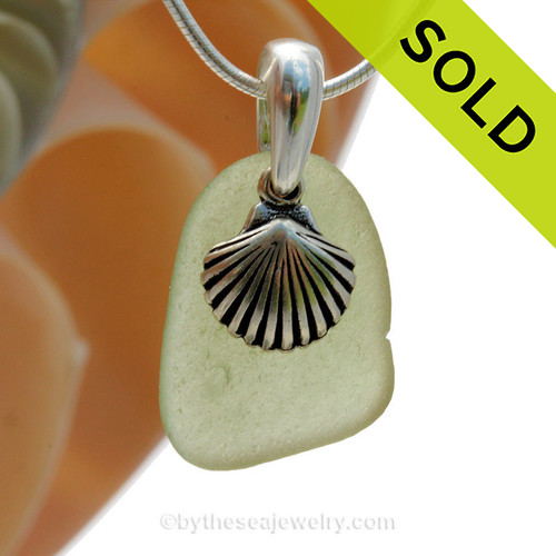 """Well Aged Peridot Green sea glass set on a solid sterling cast bail with a sterling silver Shell charm. The sea glass necklace comes on our 18"""" solid sterling smooth snake chain (SHOWN and included). SOLD - Sorry this Sea Glass Necklace is NO LONGER AVAILABLE!"""
