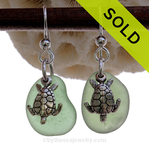 Natural beach found unusual green sea glass pieces are set with solid sterling Sea Turtle charms and are presented on sterling silver fishook earrings.
