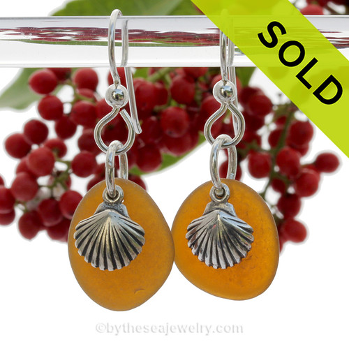 Perfect Natural UNALTERED Amber Sea Glass Earrings W/ Solid Sterling Sea Shell Charms