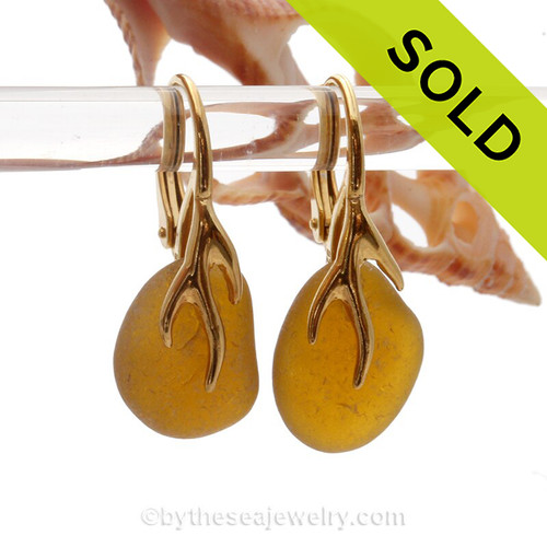 Bright Amber Sea Glass Earrings on 24K Gold Vermeil Coral Branch Earrings