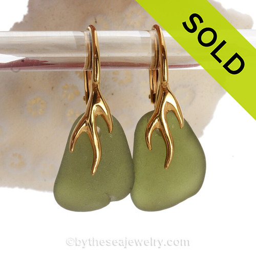 Beautiful Seaweed Green Sea Glass Earrings on 24K Gold Vermeil Coral Branch Earrings