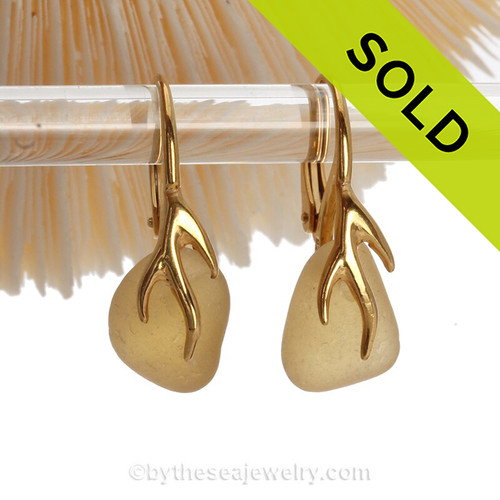 Golden Yellow Seaham Sea Glass Earrings on 24K Gold Vermeil Coral Branch Earrings
