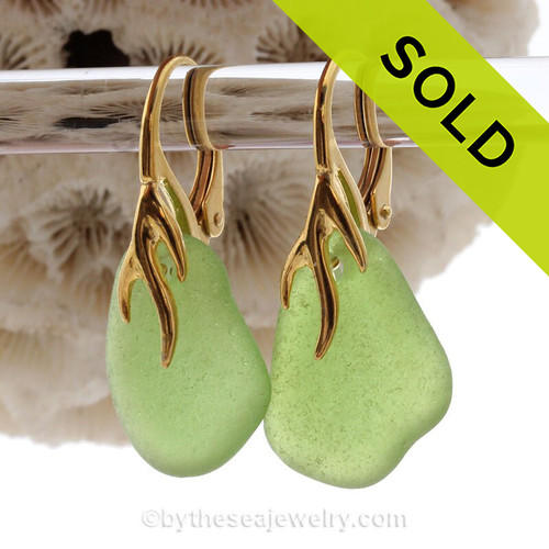 Bright Green Sea Glass Earrings on 24K Gold Vermeil Coral Branch Earrings