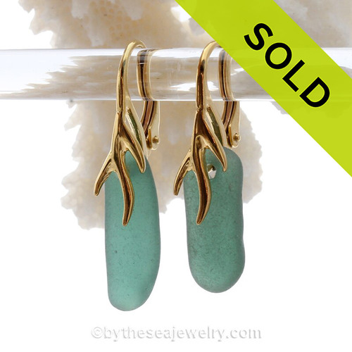 Warm Aqua Green Sea Glass Earrings on 24K Gold Vermeil Coral Branch Earrings