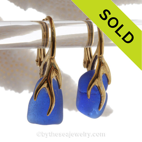 Cobalt Blue Sea Glass Earrings on 24K Gold Vermeil Coral Branch Earrings