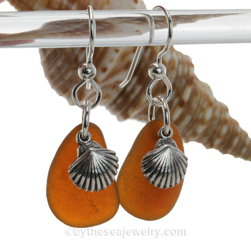 Natural glowing amber brown sea glass pieces are set with solid sterling sea shell charms and are presented on sterling silver fishook earrings.