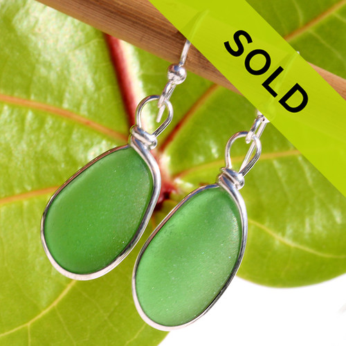 These perfect green sea glass earrings have sold!