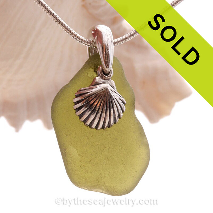 Organic shaped Peridot Green Sea Glass Necklace with beach found glass and Solid Sterling Sea Shell Charm and INCLUDING Solid Sterling Silver Snake chain.