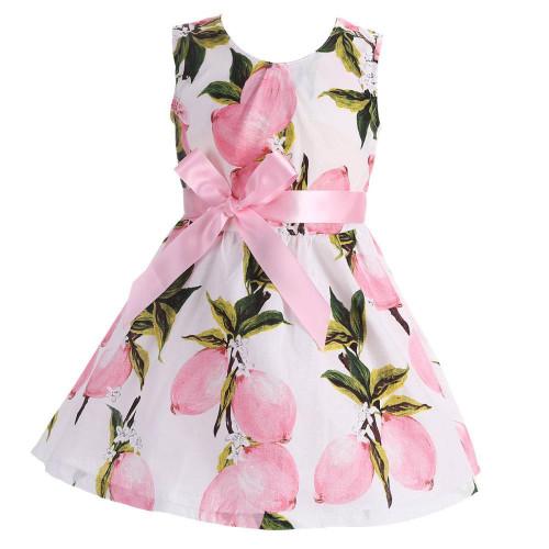 2017 New Summer Style Lace Girls Dress Baby Girls Casual Dresses Children's Clothing Vestidos Infantis Toddler Girl Clothing - Joelinks store