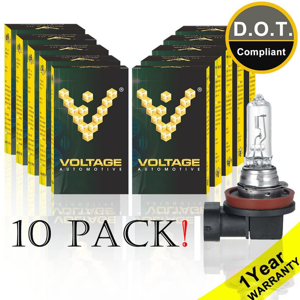 Voltage Automotive H9 Standard Headlight Bulb (10 Pack Wholesale)