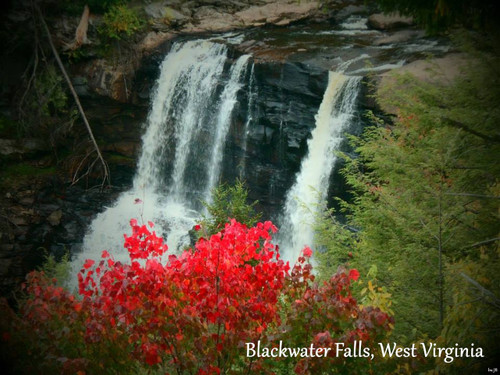 Fall vignette of beautiful Blackwater Falls, West Virginia on tapestry throw blankets