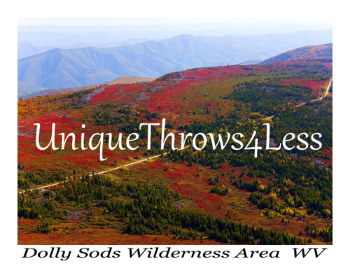 Dolly Sods, West Virginia unique souvenir on tapestry throw blankets