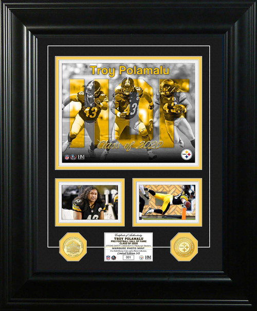 Troy Polamalu Photo Mint