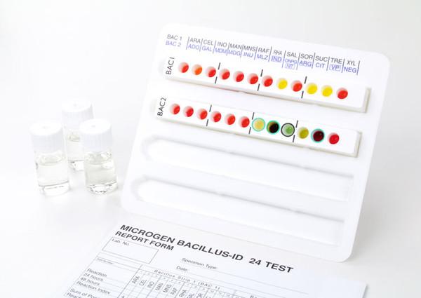 Microgen® Bacillus ID strips