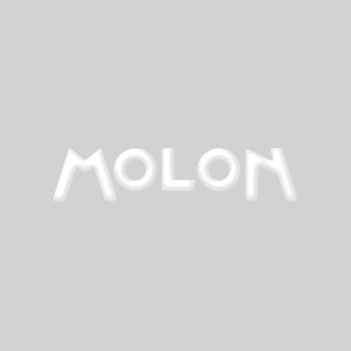 Hay Stop Arm for Molon 160, 180, 230
