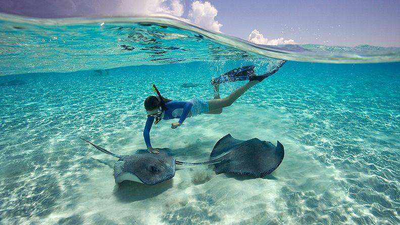 grand-cayman-string-rays.jpg