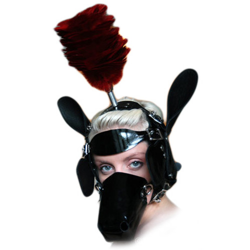 StockRoom Ponyhead Bridle Set Black Patent with Ruby Plume