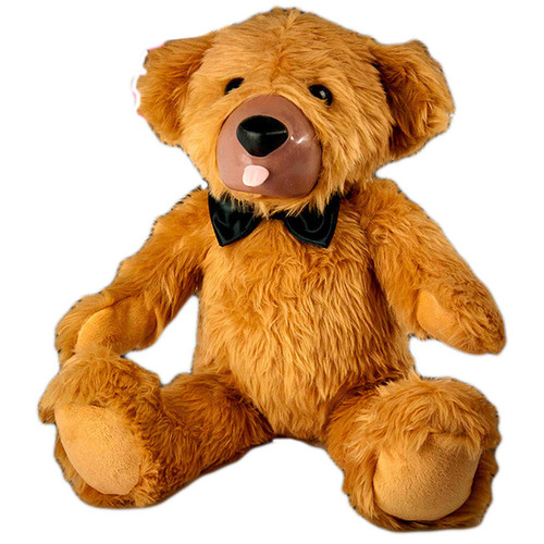Teddy The Love Bear
