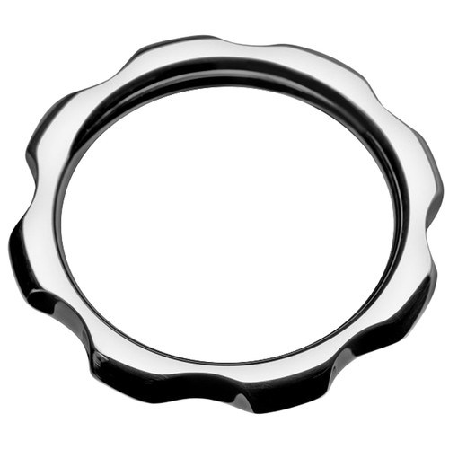 Master Series Gear Head 2 inch Metal Cock Ring