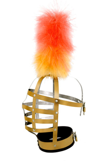 Master Series Pony Fashion Gold Head Cage with Plume