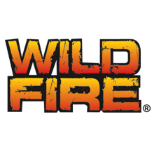 wildfire toys by Topco