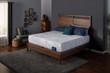 Serta Perfect Sleeper Backstrom Plush Mattress 5