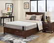 "Genesis 10"" G-Series Memory Foam Mattress, Plush"