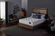 Serta Perfect Sleeper Elkins II Plush Mattress; Lifestyle