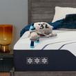 Serta iComfort CF3000 Plush Mattress