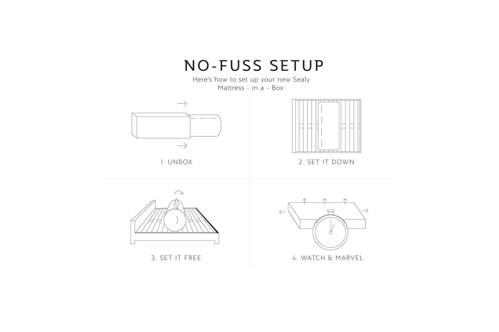 Setup Steps