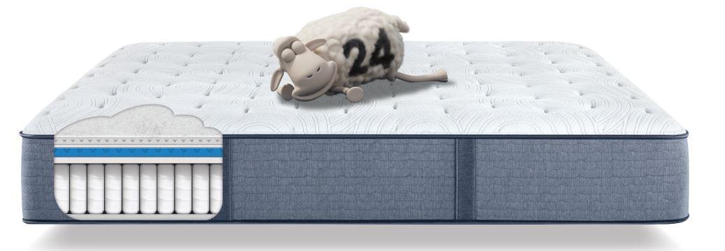 Perfect Sleeper Extra Firm Cutaway