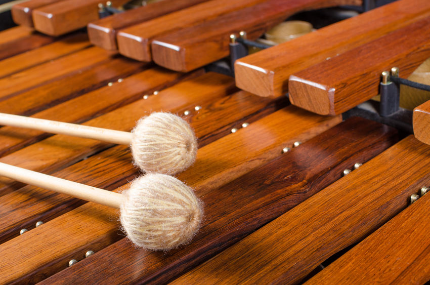 Top Music Books for Learning the Marimba