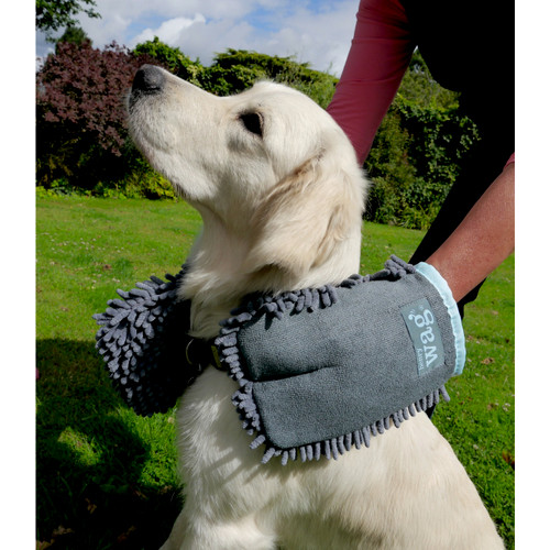 Pet Drying Mitts
