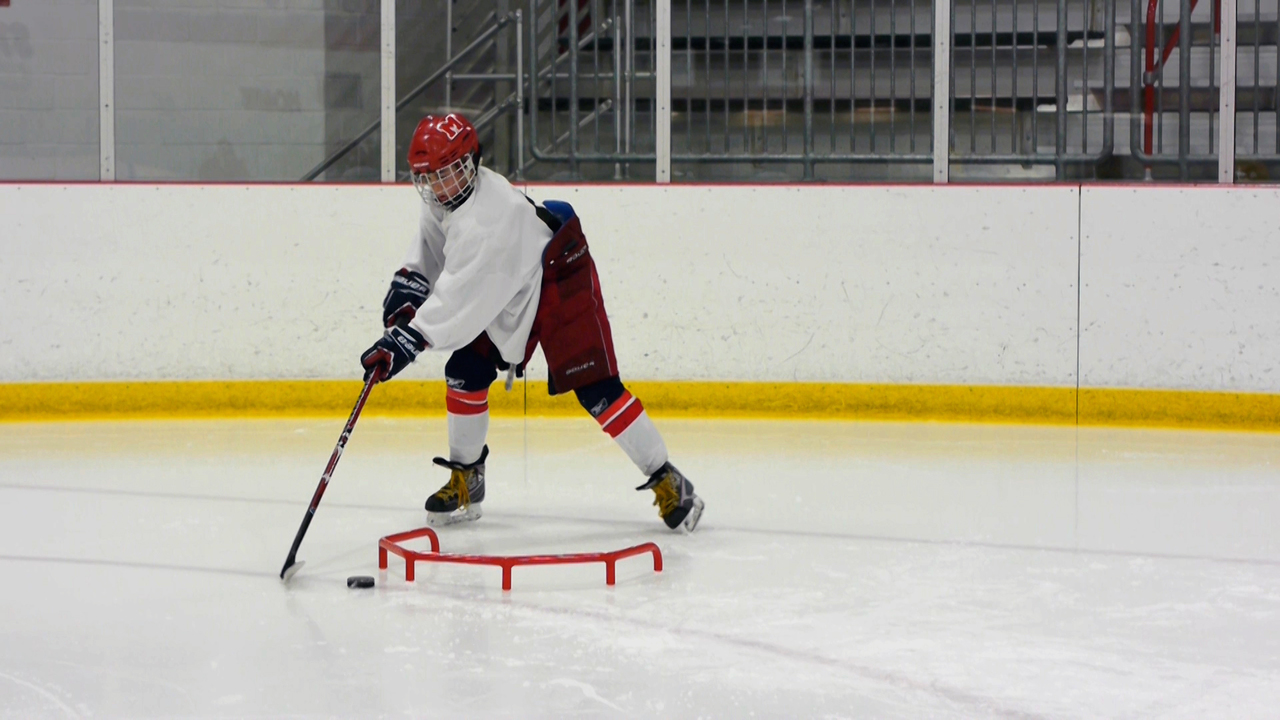 Fast Hands Professional - Hockey Stickhandling Aid