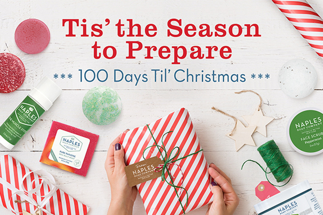 Christmas Count Down: 100 Days to Plan and Shop