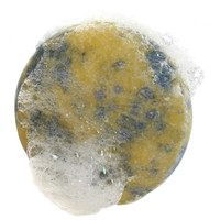 Bubbly Ocean Breeze Shampoo Bar