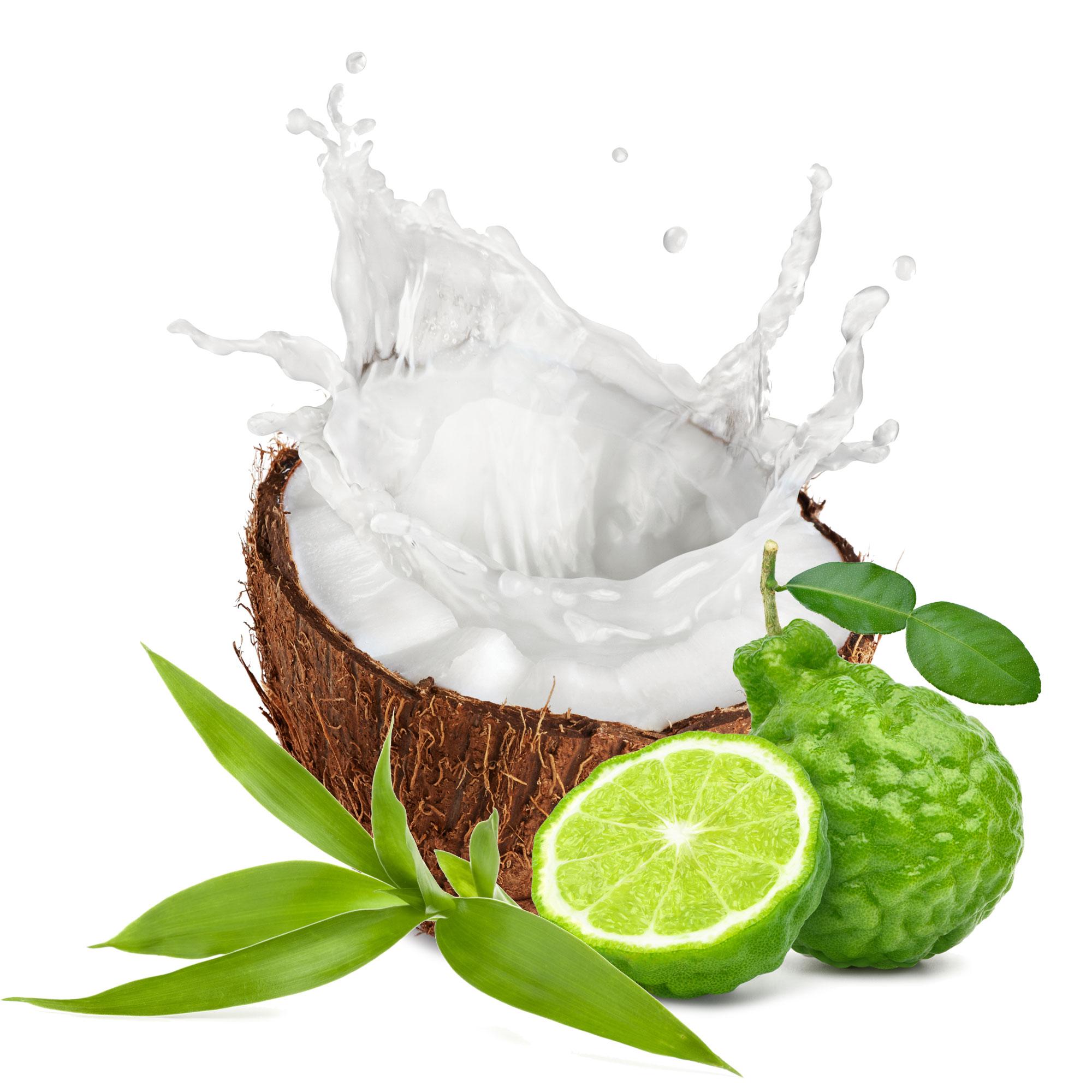 Coconut Water Scent Ingredients