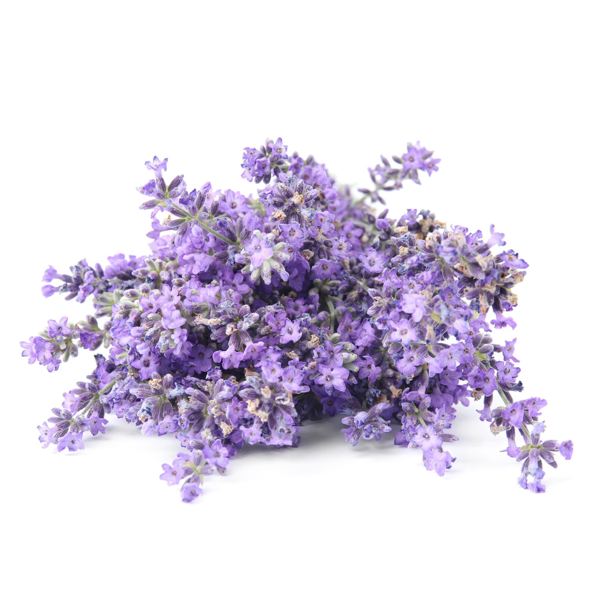 Lavender Scent Ingredients