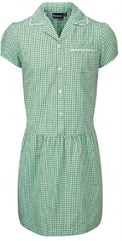 Ashley Gingham Corded Summer Dress (Multiple Colours)