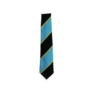 Williamwood High School Tie