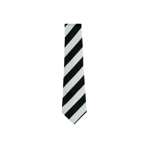 Busby Primary School Tie (Standard)