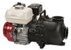 Banjo 2 in. Poly Manifold Wet Seal Centrifugal Pump w/ Gas Engine - 5.5 HP, 216 GPM