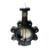 Apollo LC141 Series 8 in. 150# Flange Ductile Iron Butterfly Valve, Lug Style