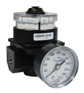 Dixon Wilkerson 3/8 in. R21 Dial Air Regulator With Gauge