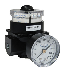 Dixon Wilkerson 3/4 in. R21 Dial Air Regulator With Gauge