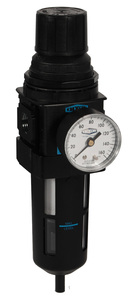 Dixon Wilkerson 3/8 in. B18 Compact Filter/Regulator with Transparent Bowl & Guard - Auto Drain