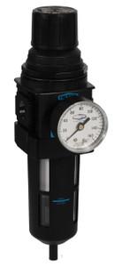 Dixon Wilkerson 1/2 in. B18 Compact Filter/Regulator with Transparent Bowl & Guard - Manual Drain