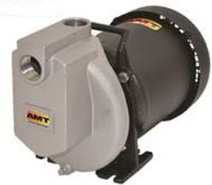 AMT 429A98 1 in. Self-Priming Stainless Steel Centrifugal Pump
