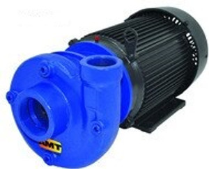 AMT 315695 Heavy Duty Cast Iron Straight Centrifugal Pump